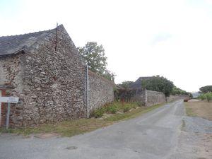 Savennières, Domaine de la Roche aux Moines, Vue sur le gite et le mur du domaine, Cl. Elisabeth Poulain
