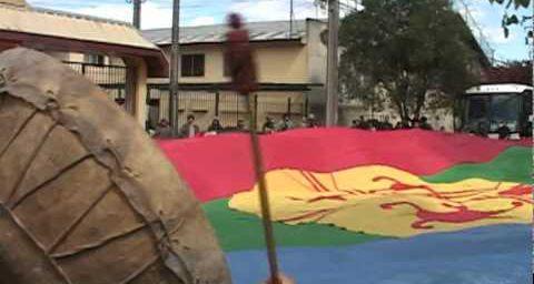 Temuco : Manifestation avec un immense drapeau Mapuche - Bandera Mapuche