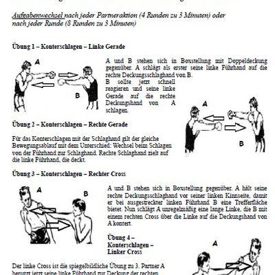 BoxDrills - Die besten Boxpartnerübungen