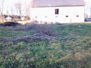 Nous avons couper les branches pour les brûler plus facilement. Et poser un petit banc pour les poses