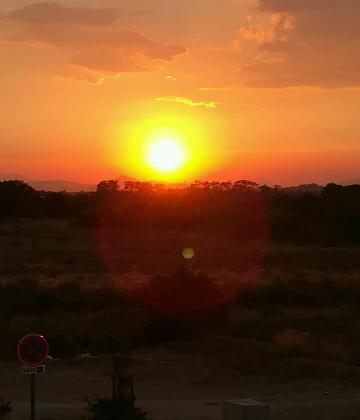 Soleil du sud