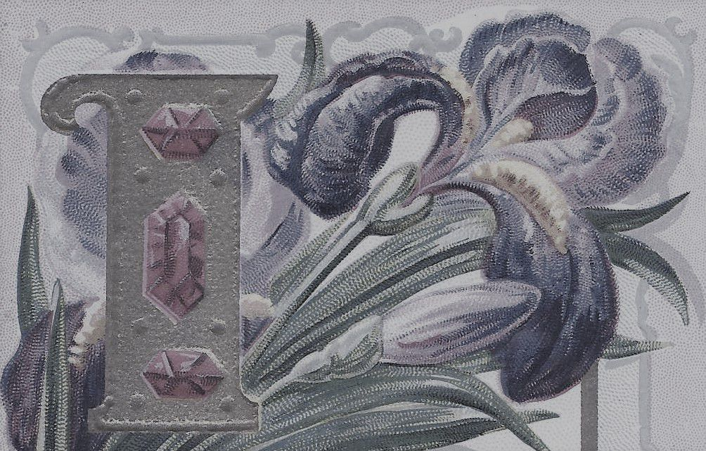 724 - IRIS MESSAGE - Gaufrée