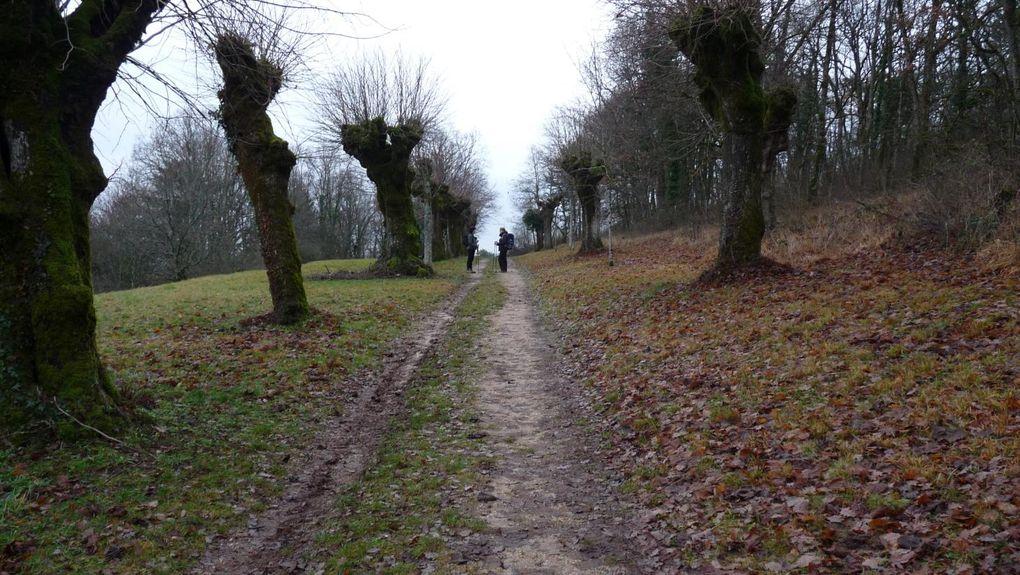Idées de randonnées - Tome 2.