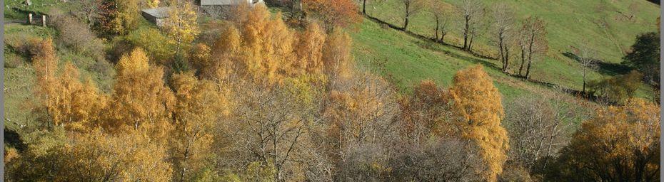 Balade dans le Cantal en Novembre 2015
