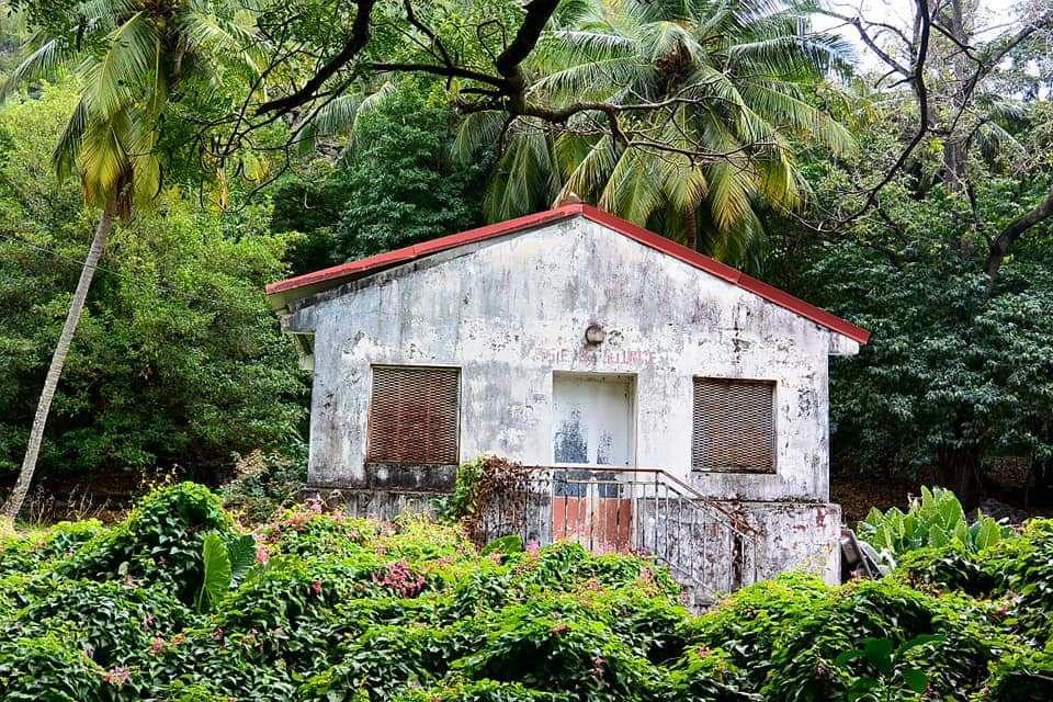 Verte Martinique en images