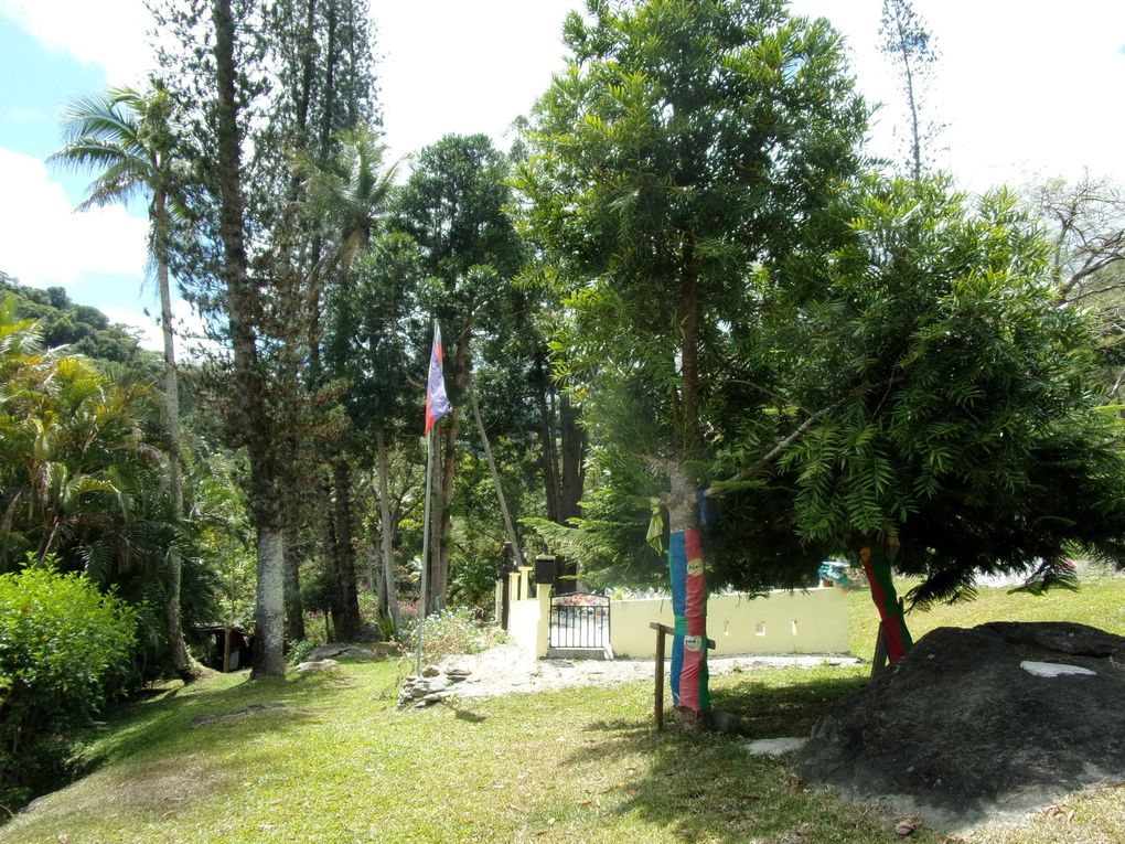 Saga néo-calédonienne ….. Voyage jusqu'à Tiendanite.