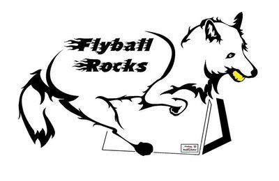 Séminaire FLYBALL 2016 - Rocket Relay