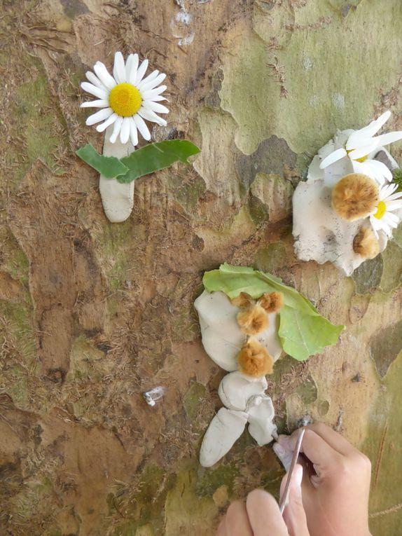 TAP : atelier nature