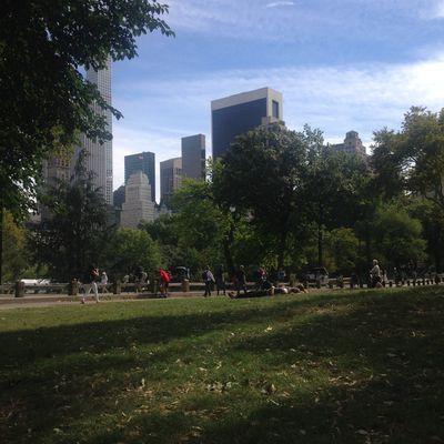samedi à Central Park