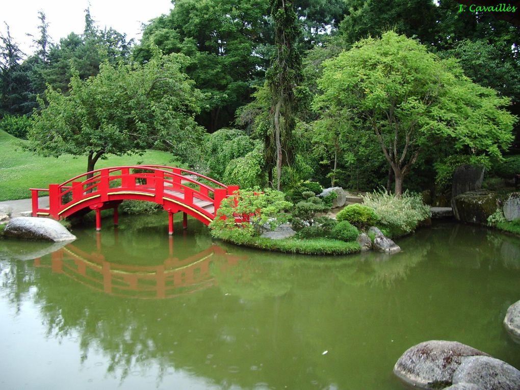 Album - Jardin-japonais-de-Toulouse