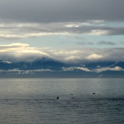 Vancouver Island...