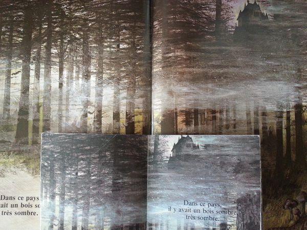 Une histoire sombre… Très sombre. Ruth BROWN. Album + roman (Dès 3 ou 6 ans)