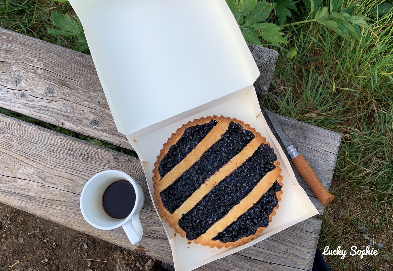 Tarte aux myrtilles et café au grand air, what else ?