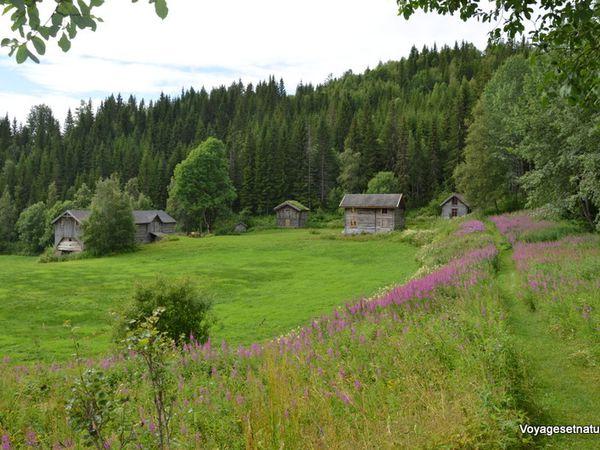 La région du Telemark