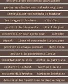 FDSE04103 Etiquette un air de pittoresque - Bandes de mots marron FEE DU SCRAP