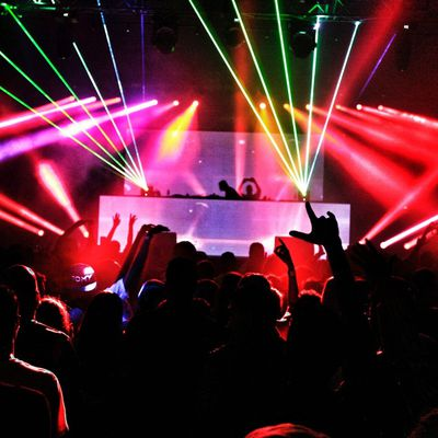 WHAT IS THE ROLE OF PRIVATE SECURITY IN SECURITY MATTERS OF A NIGHTCLUB