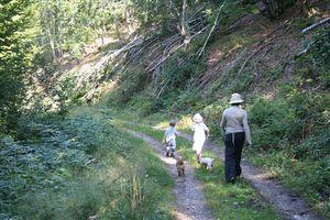 Promenade au-dessus de Larcat - Ariège