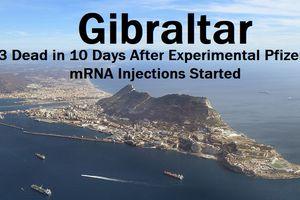 Gibraltar - Pfizer: 16 morts en un an sans vaccin, 36 morts en 10 jours avec vaccin