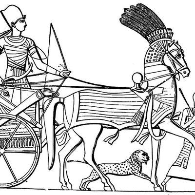Spécial Égypte ancienne : Le Prince prédestiné (Première partie)