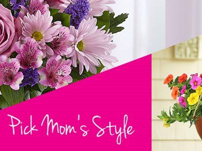 Online Mother's Day Gifts Delivery in Ajmer