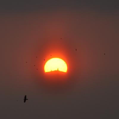 Lever de soleil sur le Ventoux