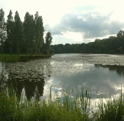 Son eau immobile/ l'étang ne sait plus/ où s'écouler/ (iovan.g)