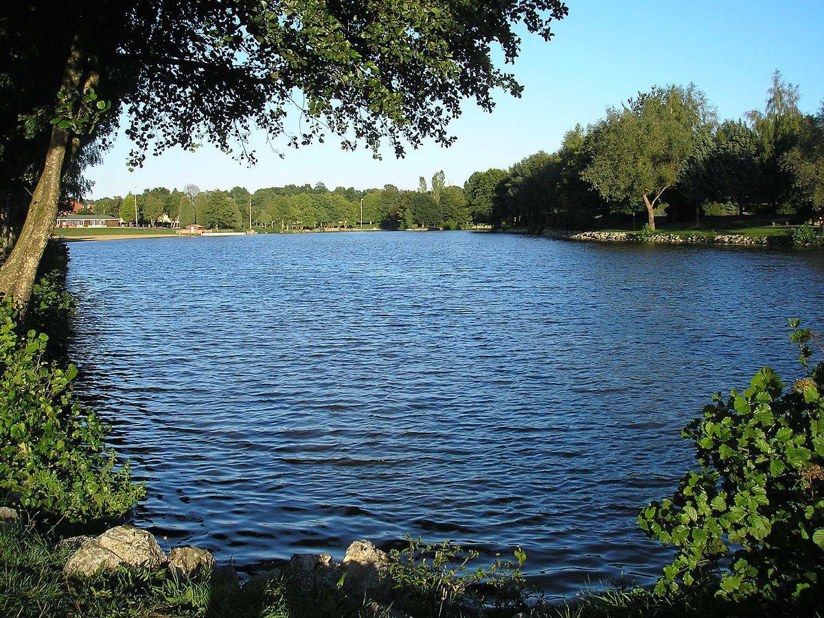 la Ferrière aux étangs-61
