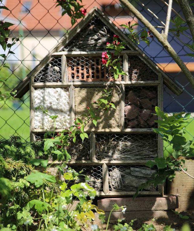 Sehenswert sind auch die Begrünung der beiden Gartenhäuschen, ebenso die vielen Kübelpflanzen im Terassenbereich und weitere Accessoires wie Bienen- und Vogelhaus.