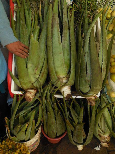 Marché : la femme en bas, enlève les graines du paprika pour les moudre et en faire de la poudre