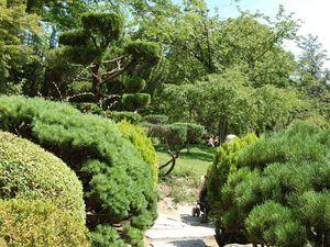 Toulouse - Jardin japonais - Photos: Lankaart (c)