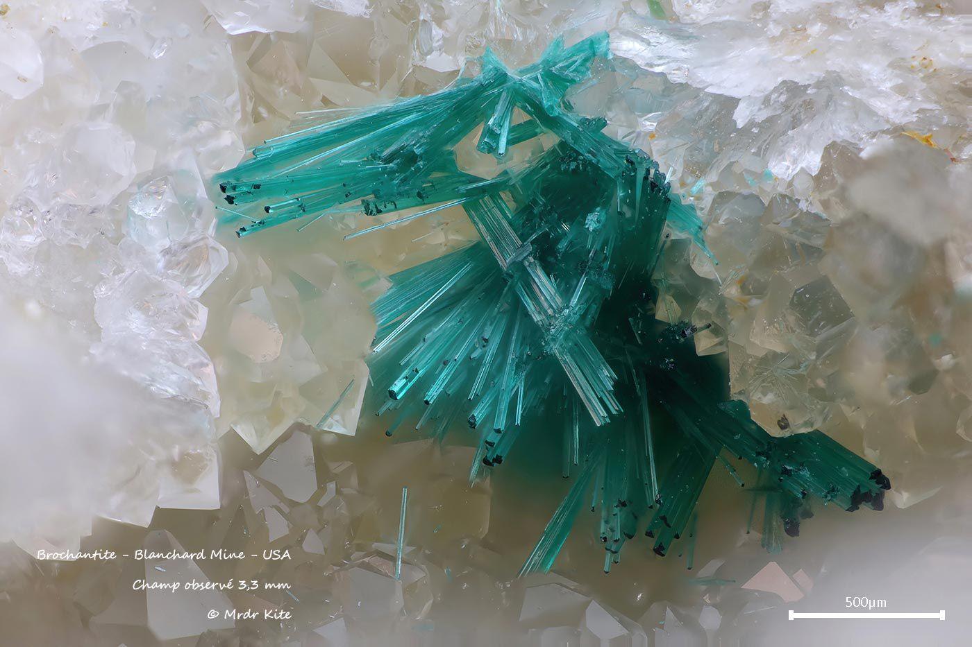Contient du sulfate de cuivre hydraté