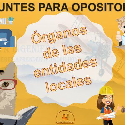 Apuntes para opositores: Órganos de las entidades locales - Organización, funcionamiento y competencias.