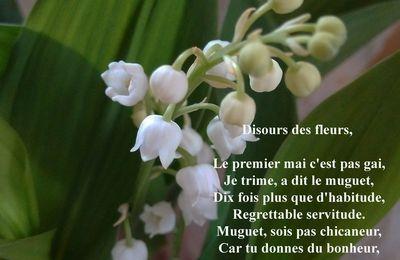 Discours des fleurs, Georges Brassens