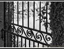 Le vieux portail en fer ... Poussez le !