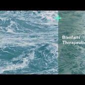 L'eau de mer - Le Plasma de QUINTON - Partie 3