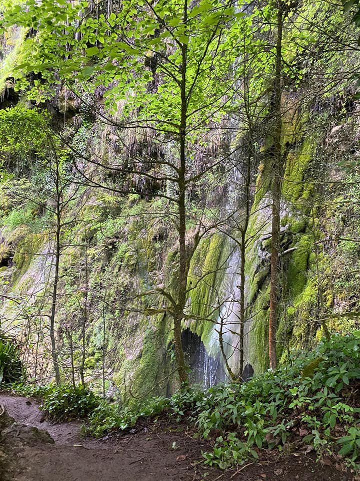Sortie trail Roquefort les cascades