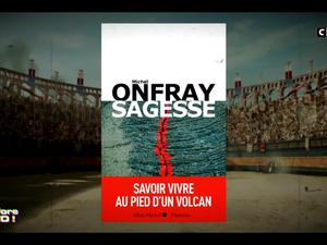 Michel Onfray - Les Terriens du dimanche (C8) - 22.01.2019