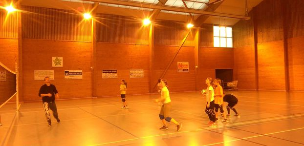 Ateliers volley 11-2016