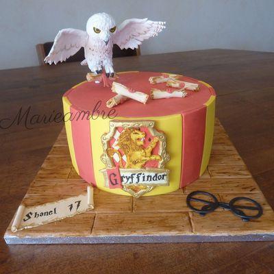 Gâteau Harry Potter et Hedwige