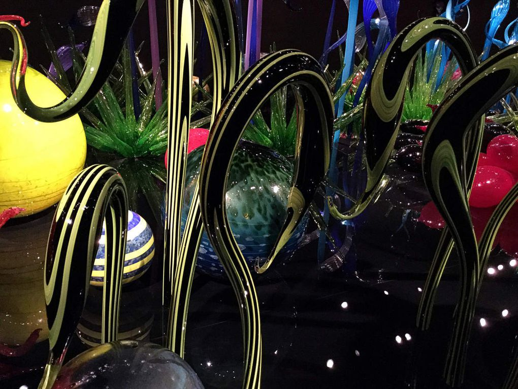 Diaporama : Chihuly Garden and Glass, Mille Fiori