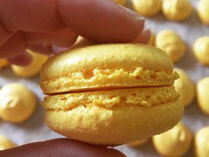 Formation Visiochef, les Macarons du Chef Clément