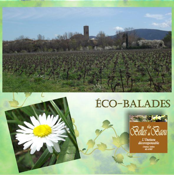 aude_canaldumidi_eco_balades_lesbellesdubaou