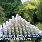 Sugarland, un film documentaire pour dénoncer les sucres cachés - Sciencesetavenir.fr