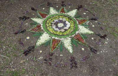 fête de la nature au jardin respectueux