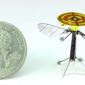 New robot bee may soon be a spy's secret weapon - OOKAWA Corp. Raisonnements Explications Corrélations