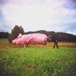 Noël Jamet, champion du monde du cri de cochon