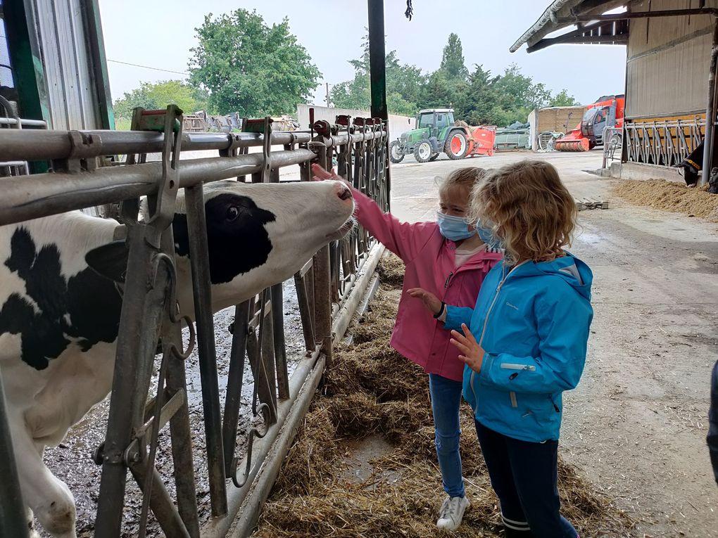Visite à la ferme - Classe GS/CP