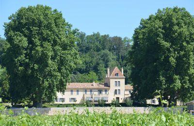 Château Bellefont-Belcier : Une renaissance au coeur de Saint-Émilion