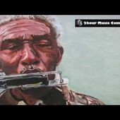 Blues Harmonica 4 - A two hour long compilation(240P).mp4