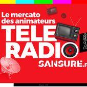 Le mercato des animateurs télé et radio ! (Diaporama) #mercato - SANSURE.FR